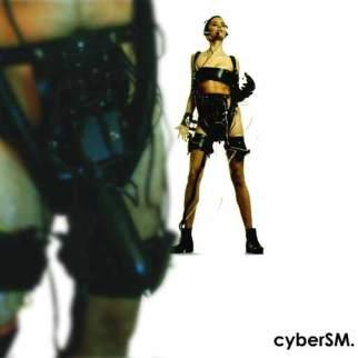 The cyberSM system